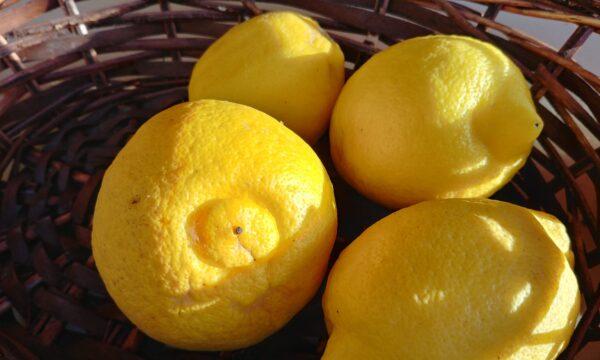 Scopriamo tutti i benefici del limone